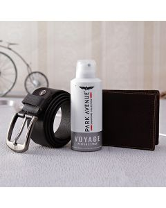 Buy Park Avenue Deo With Belt & Wallet Online