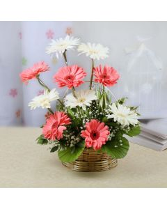 Basket of Varied Pink & White Gerberas