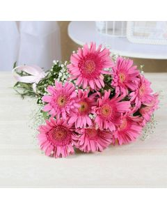 Bunch of 10 Charming Pink Gerberas