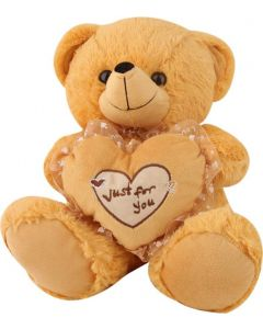 Cute Brown Brown Teddy