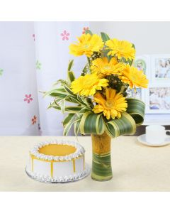 Half Kg Butterscotch Cake with 6 Yellow Gerberas