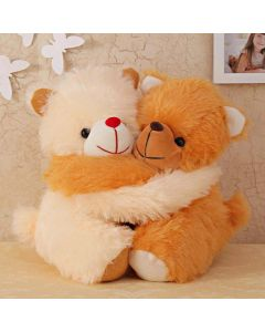 Couple Of Cute Teddies Hugging Each Other