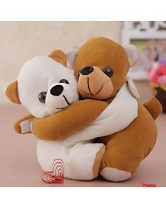 Cute Hugging Teddy Soft Toy