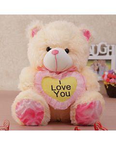 Teddy Saying I Love You