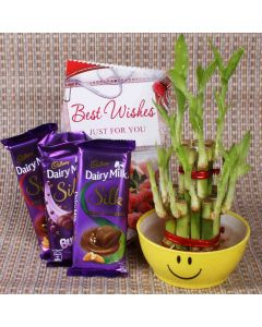 Best Wishes Gifts Combo