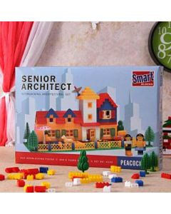 Home Architectural Playset