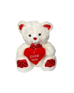Love Teddy Heart