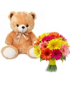 Buy Gerberas Bunch and Teddy Online