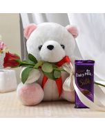 Teddy Bear with Red Rose and Chocolate